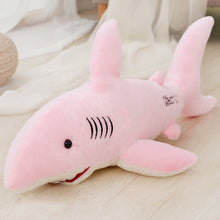 50/70/80/100cm Big Sharks Plush - Kawainess