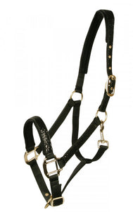 pfiff siena head collar