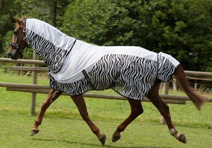 TALULAH fly sheet