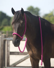 Rope Lead halter