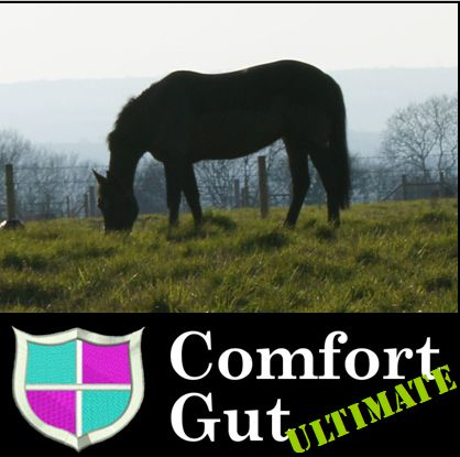Comfort Gut Ultimate