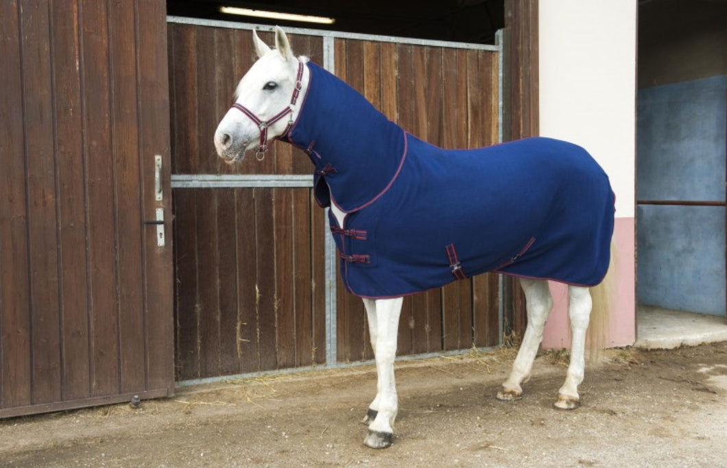 First combo polar fleece rug