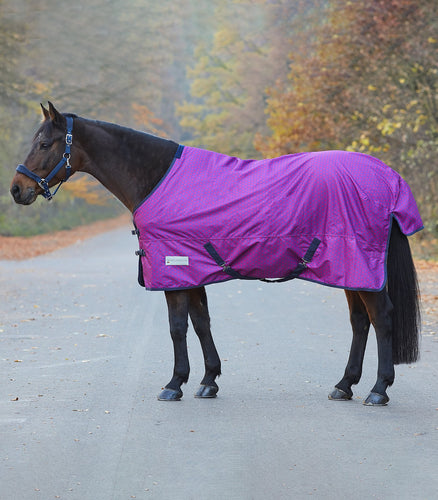 waldhausen unicorn hearts fleece lined lightweight turnout rug