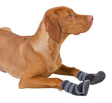 Paw Protection Active DOG BOOTS