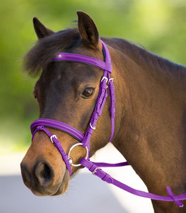 Waldhausen unicorn 2 bridle