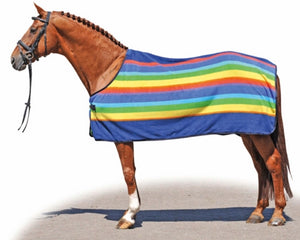 Hkm rainbow polar fleece