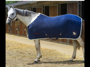 Equitheme France polar fleece