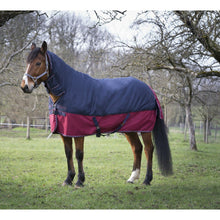 "EQUITHÈME ""TYREX 1200 D"" Combo turnout rug 350G offer"