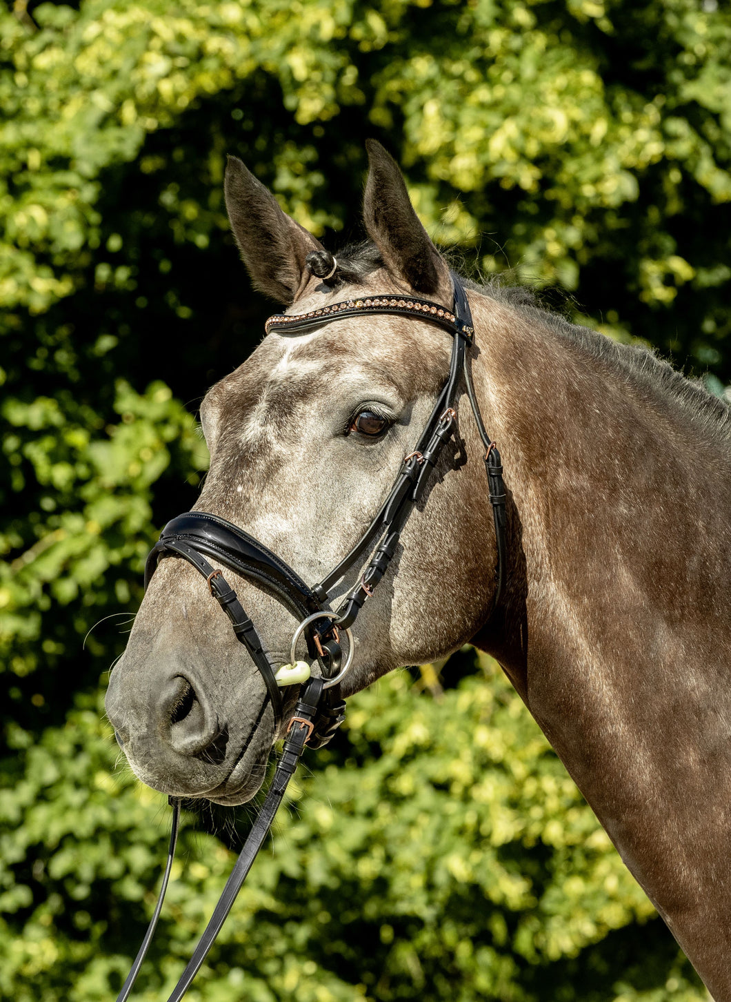 USG LOVELY ROSE BRIDLE