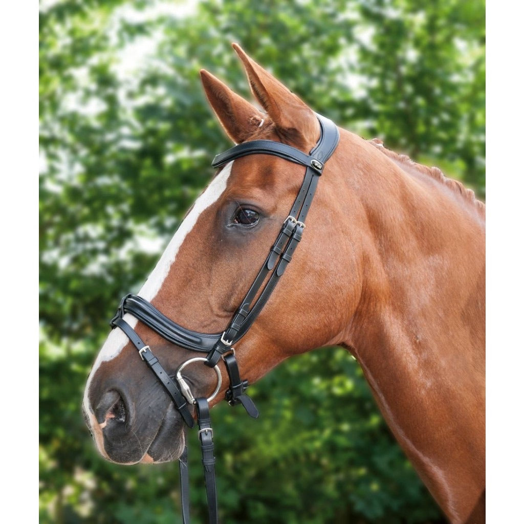 Anatomic bridle offer