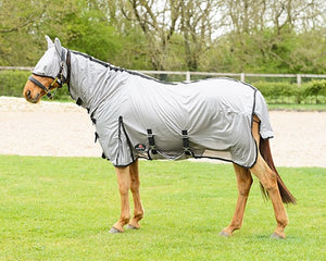 All in one fly rug