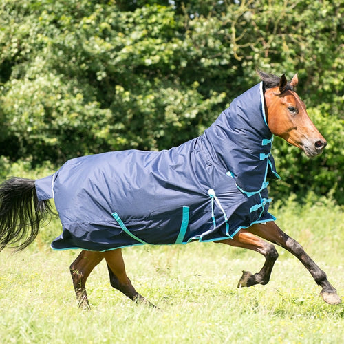 Trojan combo 300G turnout rug offer