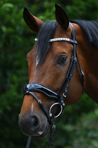 ELEGANCE' SNAFFLE BRIDLE WITH PATENT ANATOMICAL NOSEBAND
