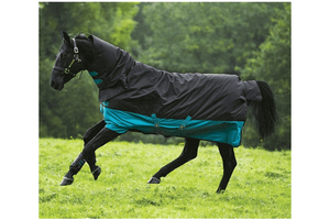 Amigo Mio One Piece Medium Turnout Rug