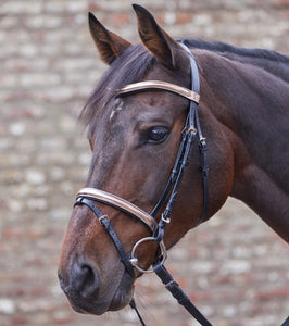 Waldhausen star rose-gold bridle