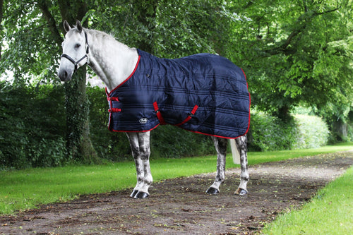 Defender 200G stable rug offer