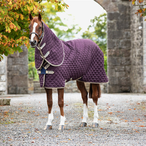 Horseware Amigo Stable Plus Med Disc Stable Rug with detachable Neck, 200g