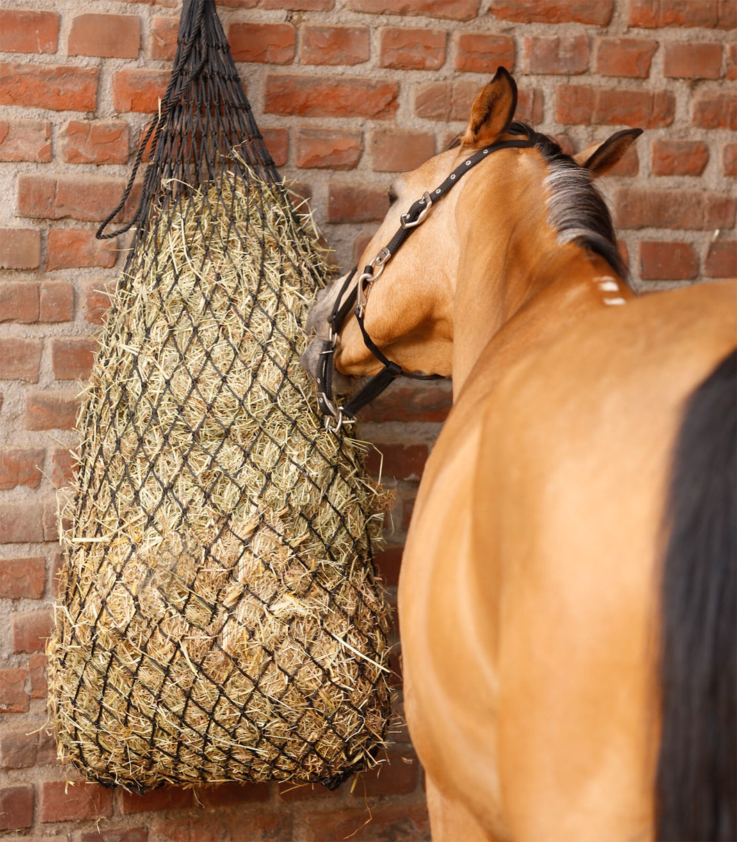 Extra large hay net offer