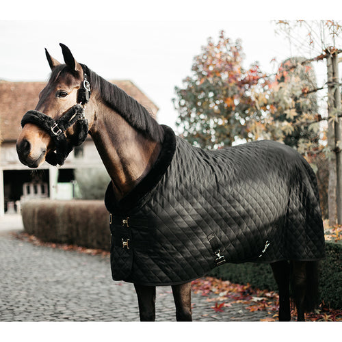 Kentucky Black Black show rug