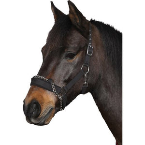 HG Head Collar With chain