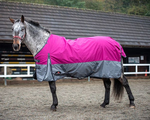 K standard 100G Raspberry turnout rug offer