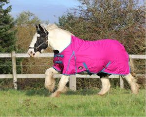K 0G standard turnout rug offer