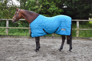 W Horse Milnrow 100G stable rug