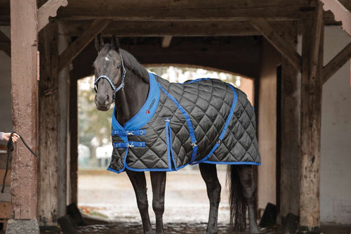 Catago standard neck stable rug offer