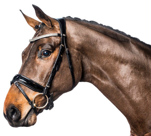 Anatomic Ergo trens bridle with crystals