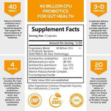 Probiotic 40 Billion CFU - 120 Capsules (1 Bottle)