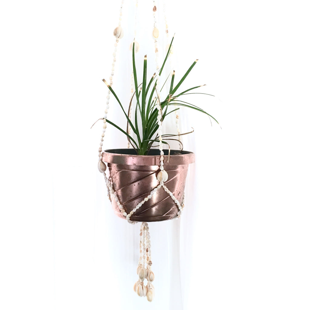 Shell Macrame Plant Holder