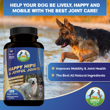 Glucosamine for Dogs, Hip and Joint Supplement With Chondroitin, MSM for Optimal Joint Health