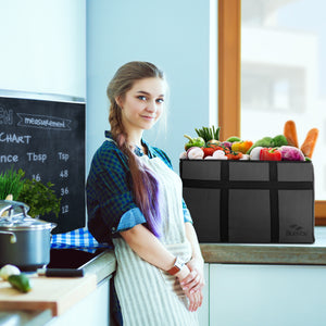 Reasons To Choose Heated Food Delivery Bags For Your Business