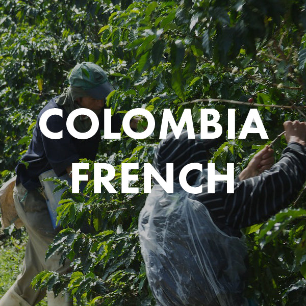 Colombia French Roast | Telegraph Coffee & Tap