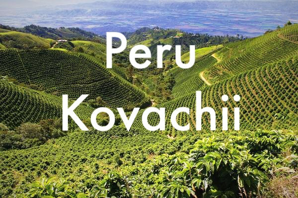 Peru Kovachii Organic - Medium Roast