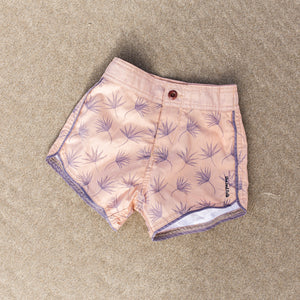 Dried fonds boardies