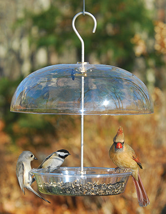 Vista Dome Feeder