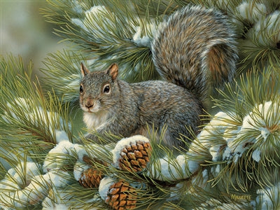 Puzzle Gray Squirrel