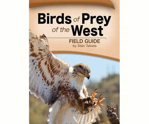 Birds of Prey Field Guide