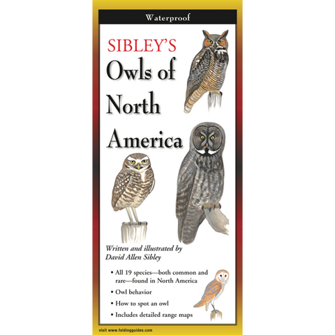 Sibley's Foldout Guide to Owls of North America
