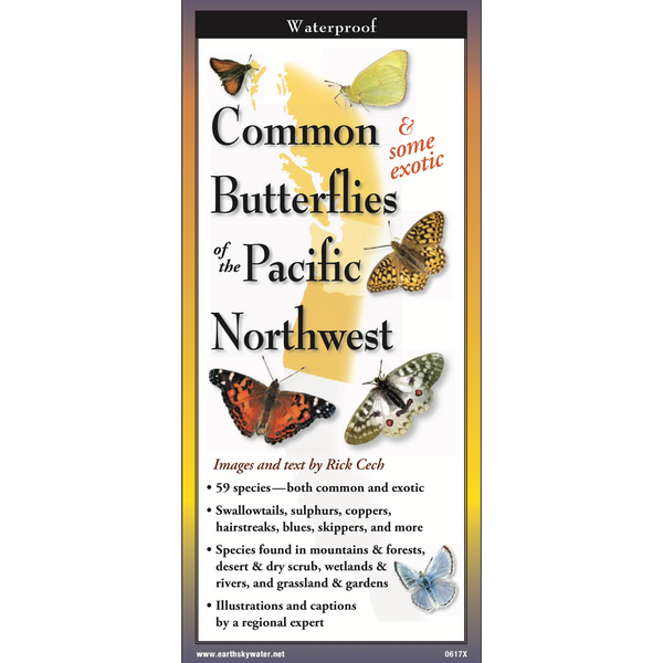 Foldout Guide to Common Butterflies of the PNW