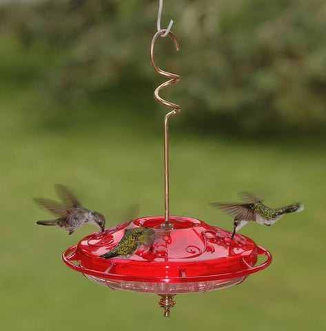 Hummzinger Fancy Hummingbird Feeder