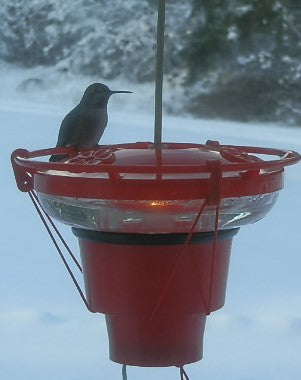 Heater for hummingbird feeders