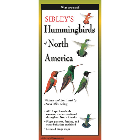 Sibley's Foldout Guide to NA Hummingbirds