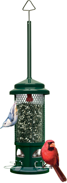 Squirrel Buster Seed Feeders