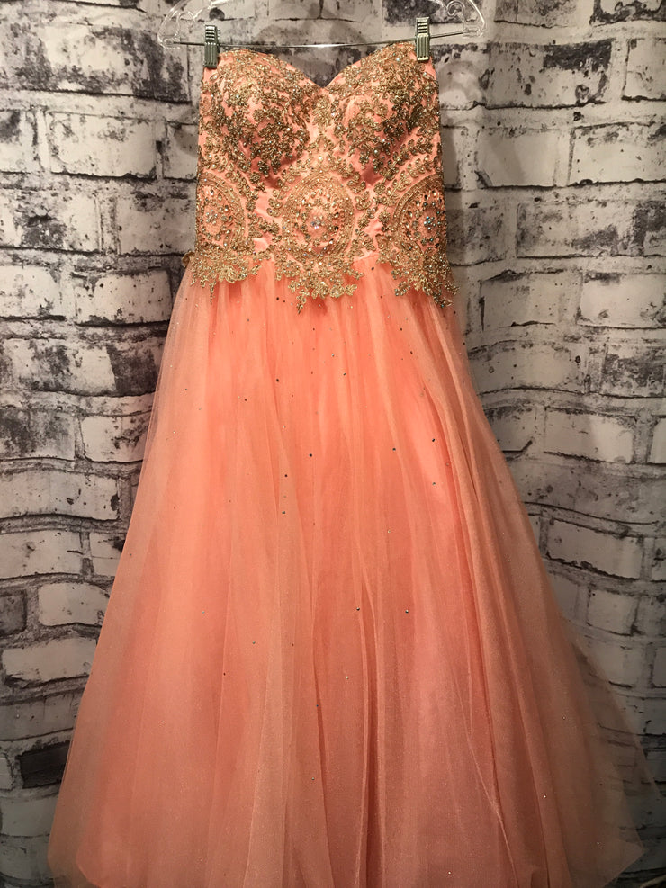 PINK/GOLD PRINCESS GOWN * *
