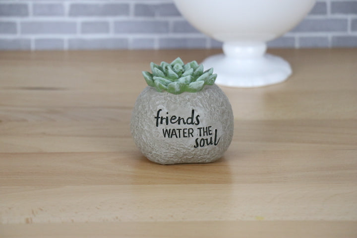 Boulder with Succulent - Friends