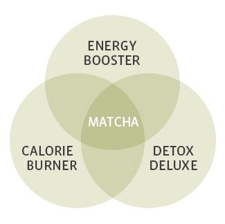 Matcha Benefits Diagram