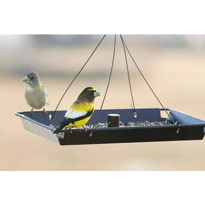 3in1 Platform Bird Feeder - BirdHousesAndBaths.com