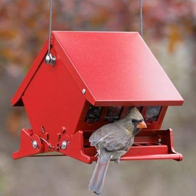 Mini Absolute II Red Bird Feeder